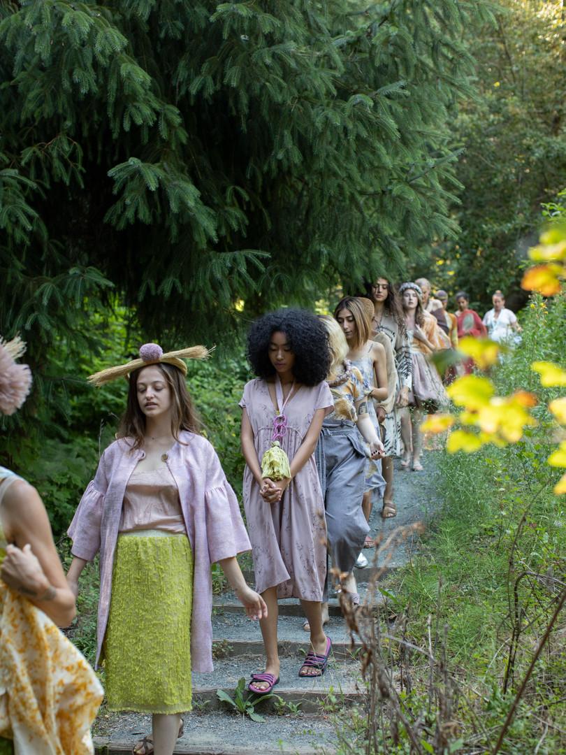Runway in the Redwoods