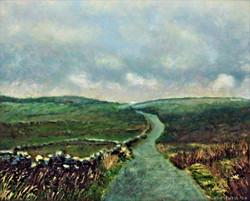 Brontë Moorland