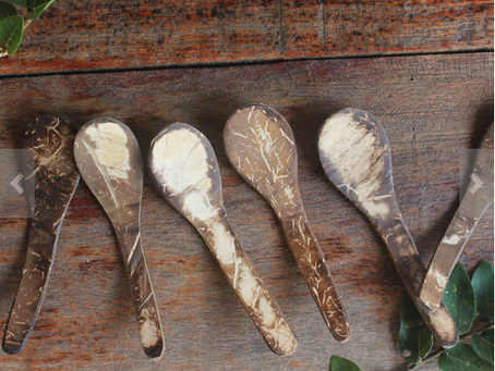 the coconut spoon story