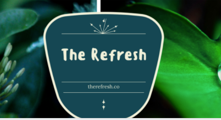 Guest Post on Refresh Co