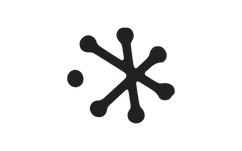 Starbelly-logo-STAR-19.png