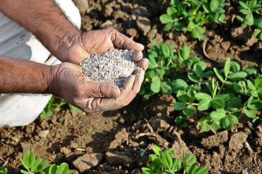 Fertilizer provides nutrients for plats
