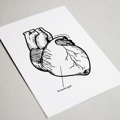 Anatomic - Auguri