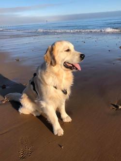Boano on the beach