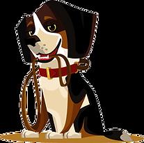 Tyrocoll-Dog-training.png