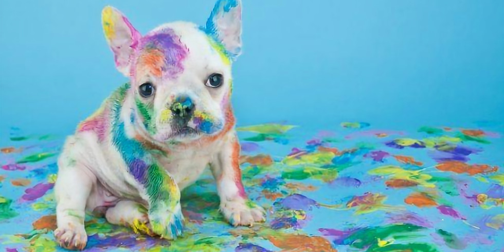 Paint for Paws