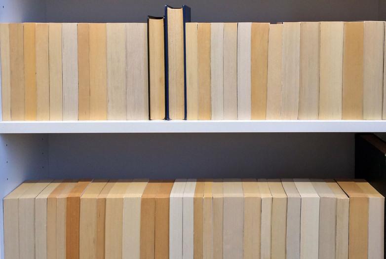 Mireia_Rocher_180_books_2