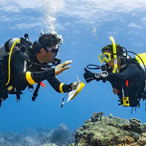 PADI Dive Theory eLearning
