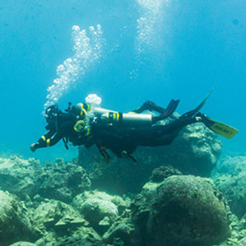 PADI Enriched Air (Nitrox) Diver eLearning