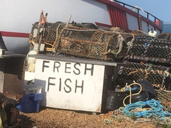 Fresh fish with boat