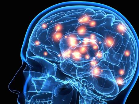 How Parkinson's Disease Affects the Brain??