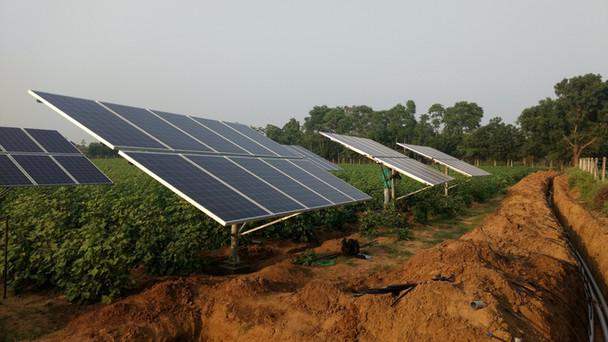 Cultivating Solar Energy - From Solar Farms to Farming With Solar