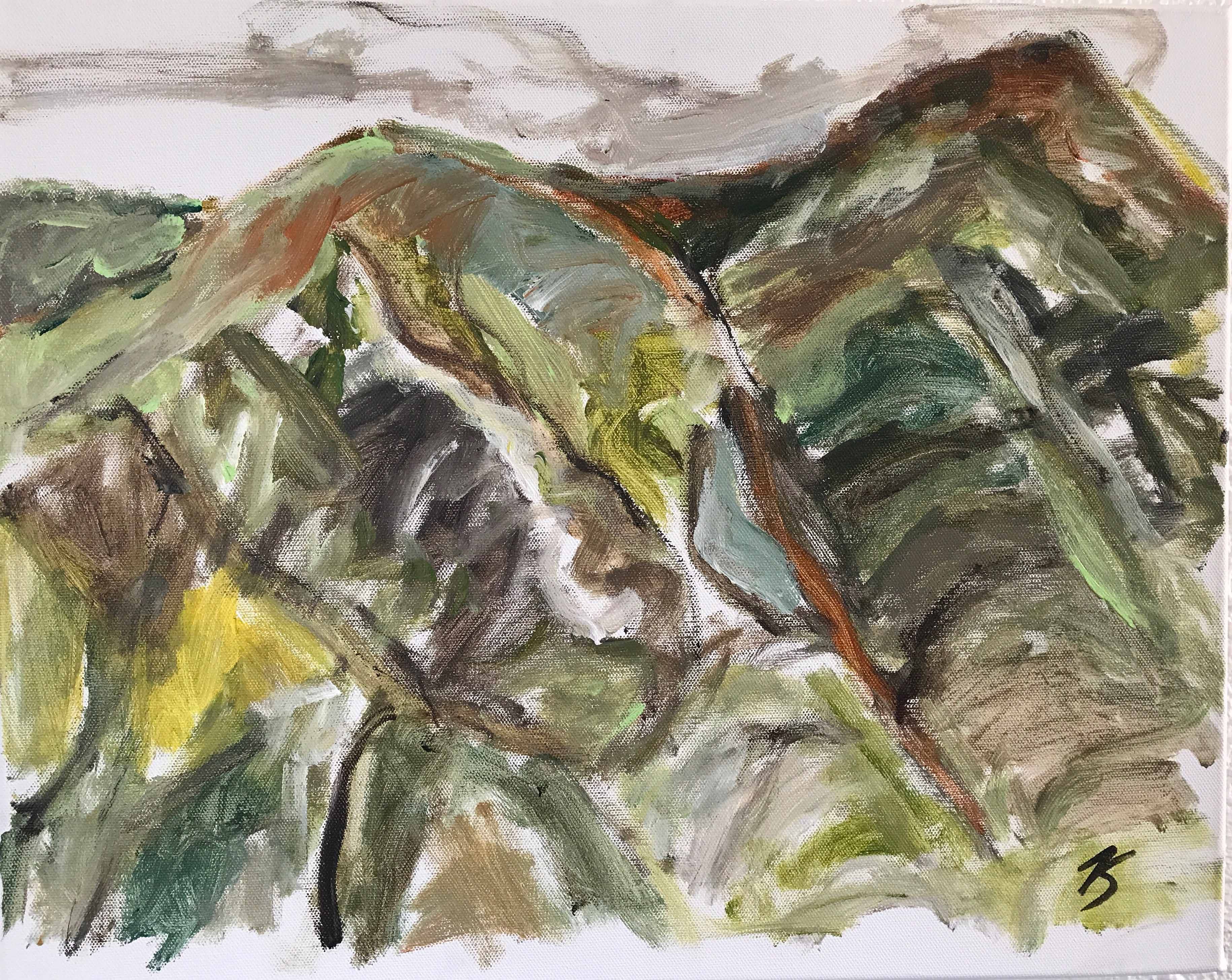 Etude montagnarde, 40x50cm,acrylique sur toile, 2017