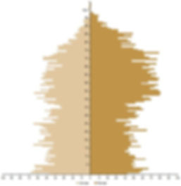 Pyramide ages monegasques.JPG