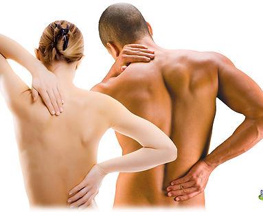 боли в спине, дорсопатия, семинар для массажистов