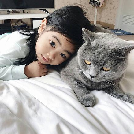 รับฝากแมว