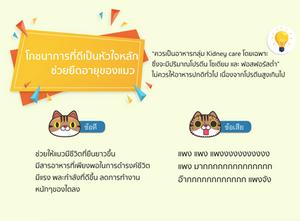 อาหารแมวโรคไต