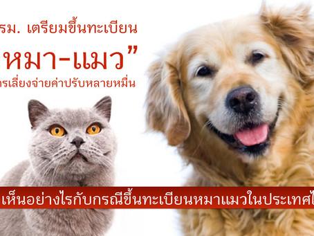 ครม.เตรียมขึ้นทะเบียน หมา-แมว เจ้าของฝ่าฝืนมีโทษปรับหลายหมื่นให้รัฐ