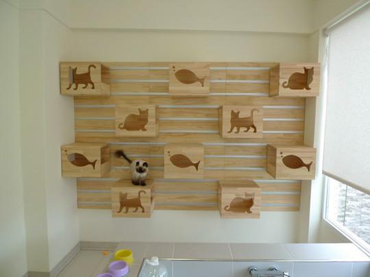 CatWall1.jpg