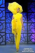 International Beauty Show Las Vegas 2015 - Hair Fashion Group