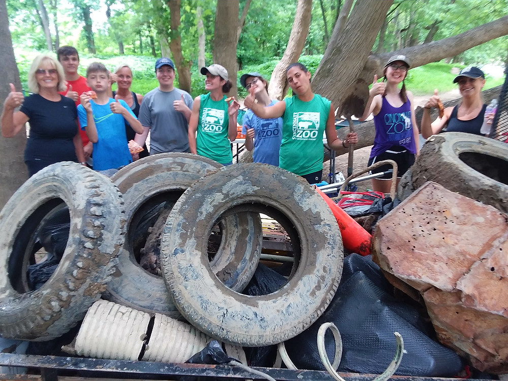 Cincinnati Zoo Staff bring a great haul of tires and trash from the Lower Little Miami on June 5th.  So many thanks!
