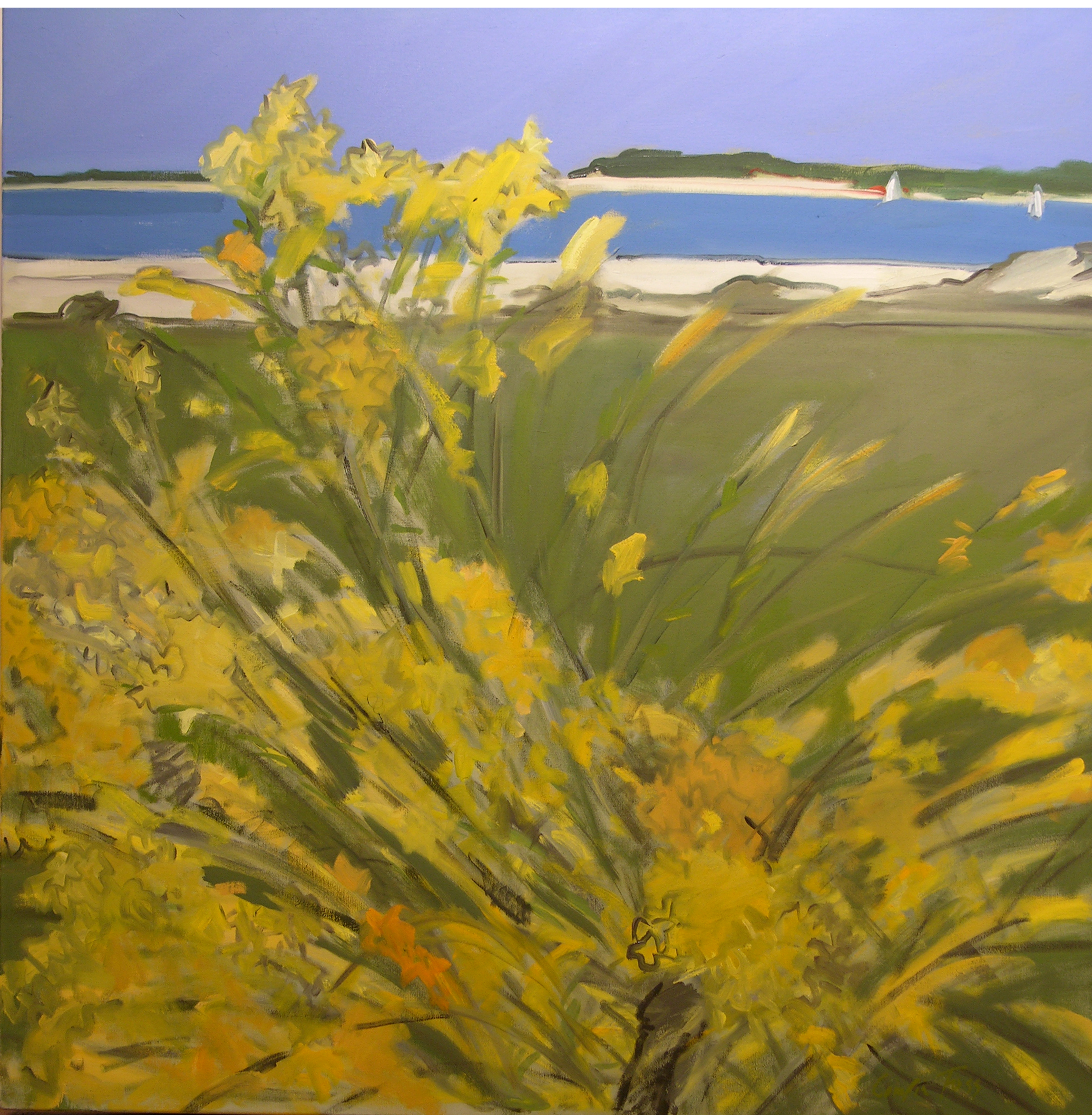 Foss_Yellow Flowers at the Beach_2005_36x34 in
