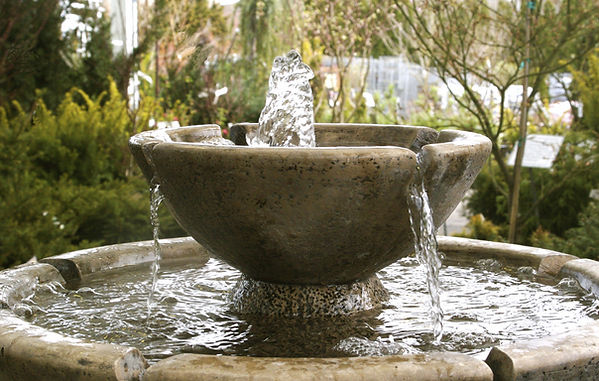How To Protect Your Water Garden Feature Over Winter