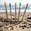 Thumbnail: Bamboo Toothbrushes-Colourful- Pack of 5