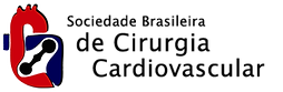 logo_sbccv_preto.png