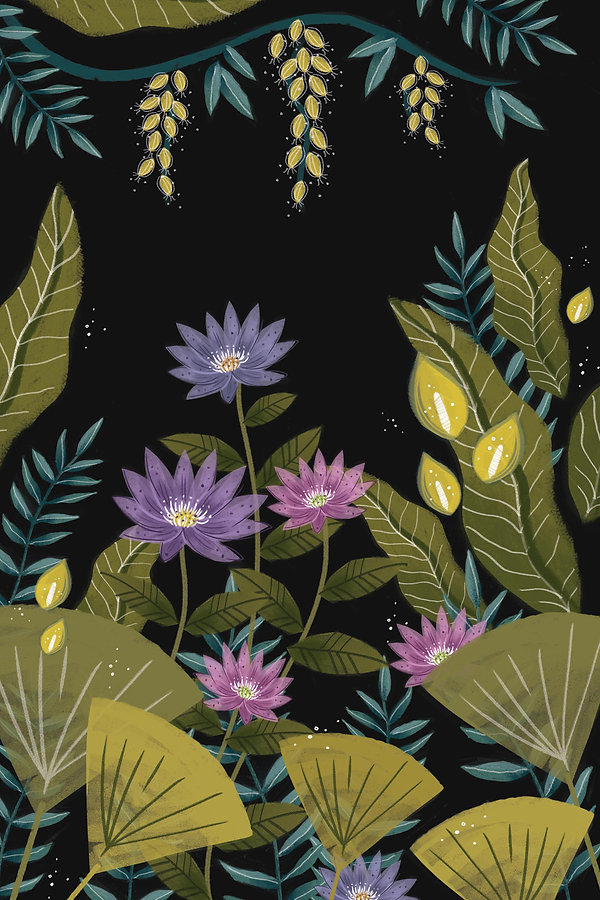 Jungle Illustration.jpg