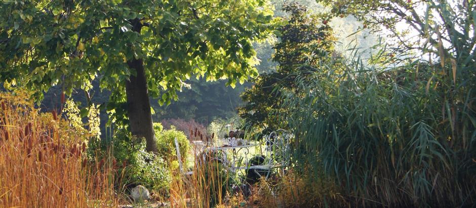 Wenn der Garten schlafen geht ... Räuchern, danken und schenken