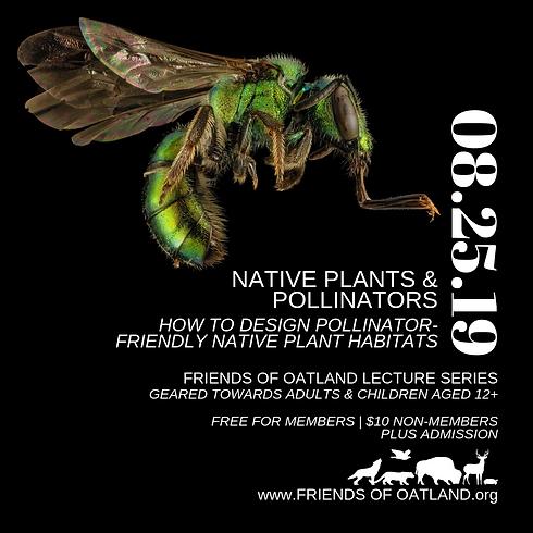 FOO Lecture Series ~ Native Plants & Pollinators