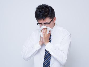 ◆そろそろ花粉の時期!?