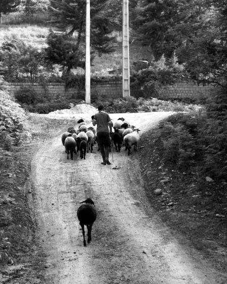 Die traditionellen Dörfer gehen immer öfter verloren. Bild: TM