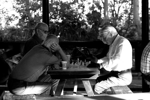 Rentner beim Schach - dem Spiel des Iran. Bild: TM