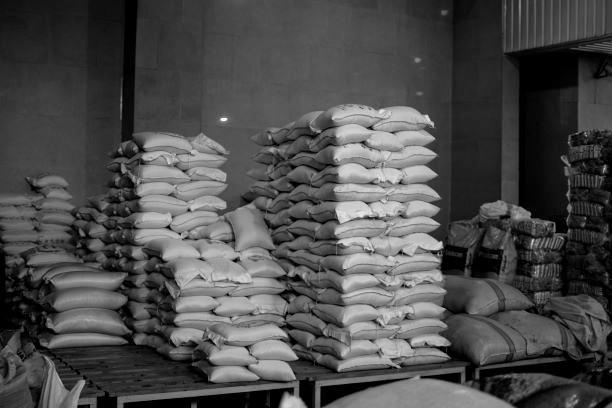 Für Iraner zu teuer: Heimischer Reis. Bild: TM