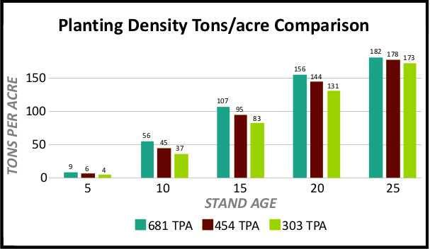 Loblolly Pine planting density tons per acre comparison