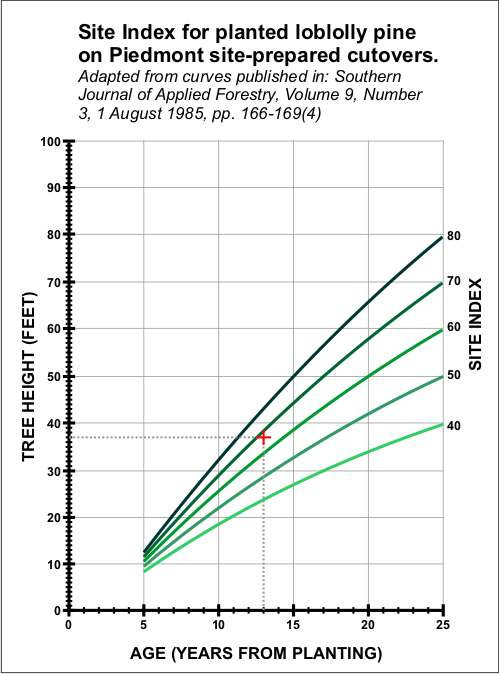 Planted Loblolly Site Index Curve