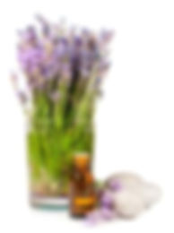 lavender with oil and stones.jpeg