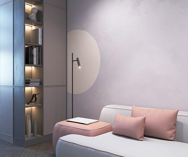 книжный шкаф в гостиной.jpg