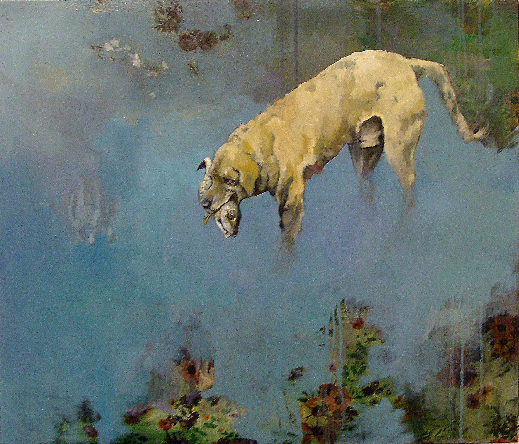 Un chien qui pêche