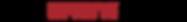 logo dronestore-original.png