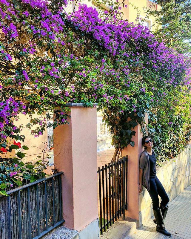 Street near Park Güell in Barcelona
