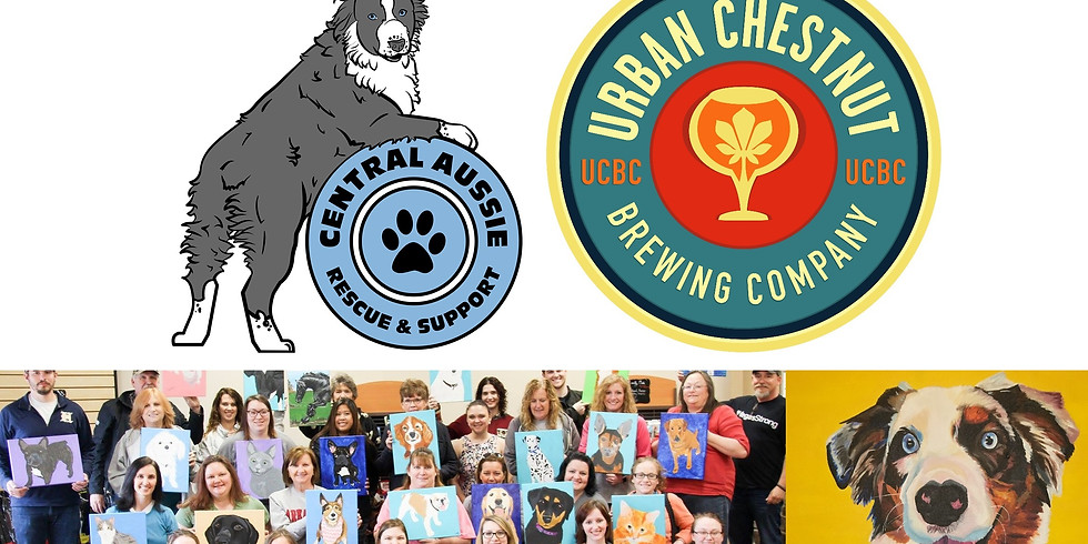 Paint Your Pet at UCBC Benefiting Central Aussie Rescue