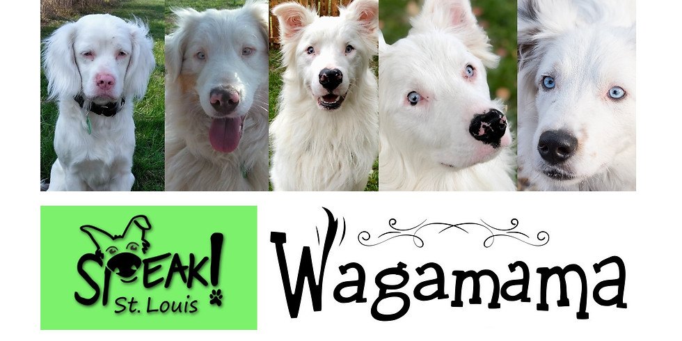 Paint Your Pet at the Wagamama