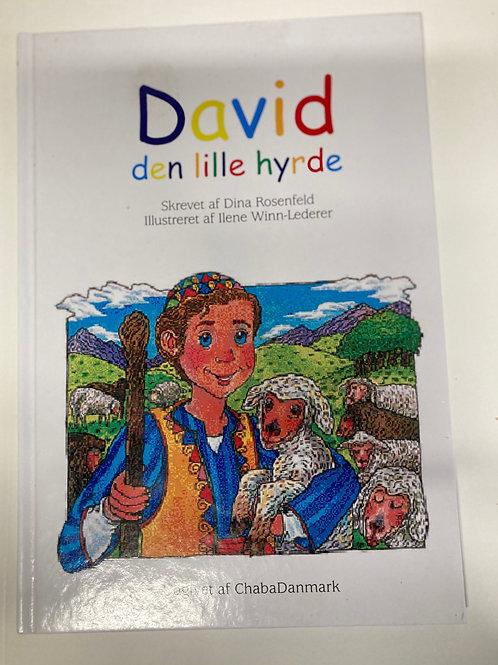 David en lille Hyrde