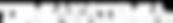 tiimiakatemia-logo-valkoinen-pitkä-optim