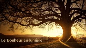 arbre-home-bel.png