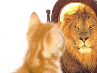 L'effet miroir ne justifie pas tout