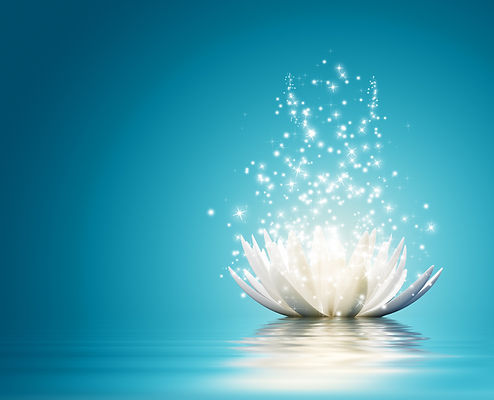 bright illuminated flower of  mediation signifying resolving conflict with peace and harmony